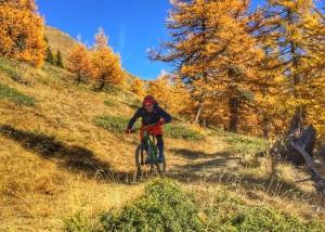 Aosta 2016.2